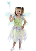 Great Pretenders Butterfly Dress & Wand Set