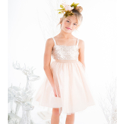 Blush Sequin Top dress with Tulle Skirt ,flower girl dress,flower girl dress toronto,flower girl dress oakville,flower giel dress mississauga,flower girl dress brampton, flower girl dress gta,flower girl dress canada,flower girls